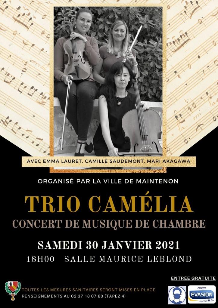 concert-camelia